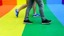 Kinderen met twee moeders of vaders zijn net zo gelukkig als kinderen met heteroseksuele ouders