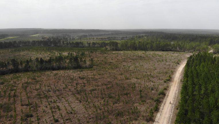 Dronebeeld van Joep van Dijk, rechtsonder klein in beeld, fietsend door Amerika Beeld -