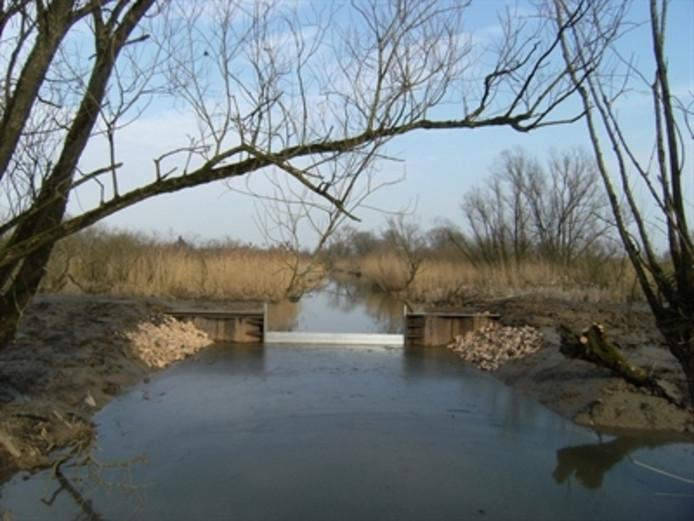 1 van de gebouwde drempels die ervoor moet zorgen dat het waterpeil in de Rijnstrangen stijgt.