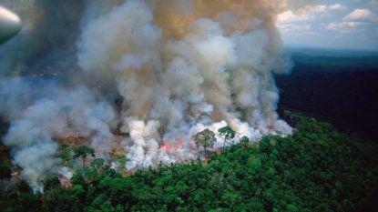 Braziliaanse president Bolsonaro staat toch open voor buitenlandse hulp om Amazonebranden te blussen