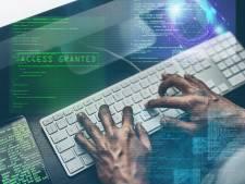 Nee, Simba1! is geen veilig wachtwoord: 'Criminelen proberen dat als eerste uit'