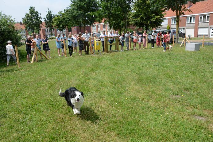 Honden hebben voortaan een eigen speelweide in de Bagoniewijk.