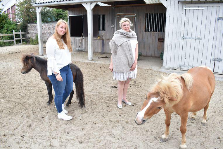 Charlotte en Liliane bekommeren zich om de twee andere pony's.