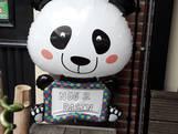 Eindelijk, de panda's komen eraan