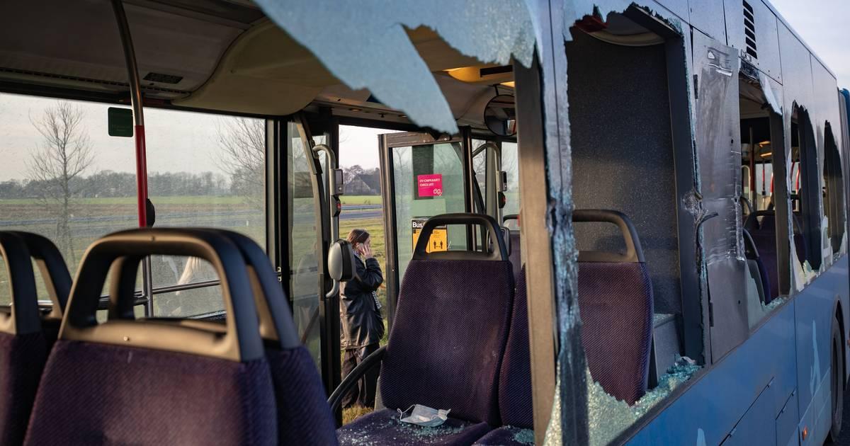 Gewonde en gesprongen ruiten bij botsing lijnbus met vrachtwagen in Ens.