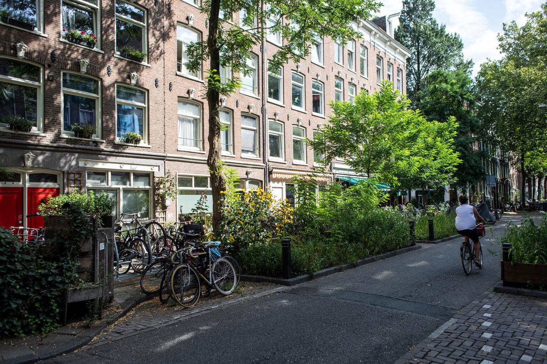 Voorbeeld van het Right to Plan: groenstroken in de Frans Halsstraat tegen de parkeeroverlast Beeld Lin Woldendorp
