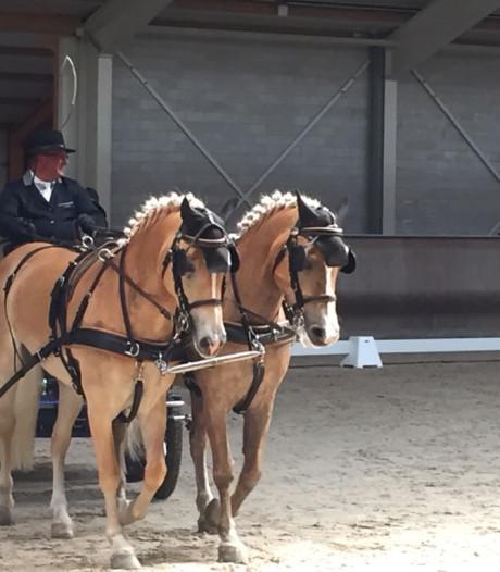 Nederlandse trekpaardentitel naar Maren-Kessel