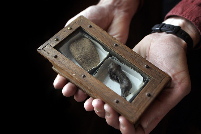De tong van Johan de Witt en de vinger van zijn broer Cornelis. Zijn ze wel echt van hen?