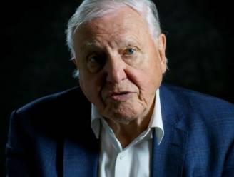 Razend populaire David Attenborough al na 2 maanden niet langer op Instagram