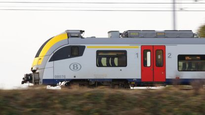 Stijgend aantal gevallen van treinsurfen in ons land