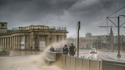 Parken dicht, staketsels gesloten en noodnummer 1722 geactiveerd: ons land zet zich schrap voor storm Odette