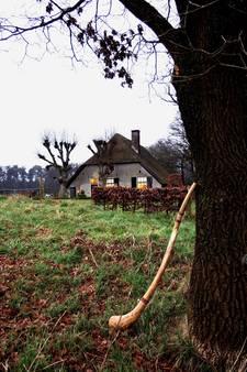 Veluwse Midwienterhoornbloazers staan op scherp voor advent