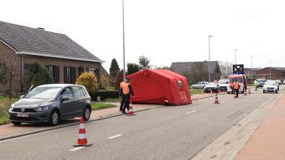VIDEO : 81-jarige fietser overleden na aanrijding in Vrasenestraat