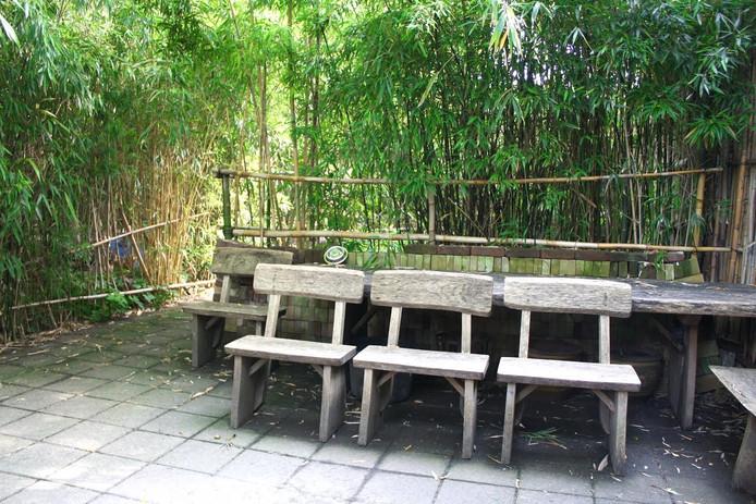 De bamboetuin