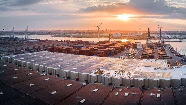 Het zonnedak van havenbedrijf Ter Haak Beeld Ter Haak Group