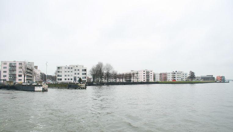 Foto Meriam de Lange Beeld