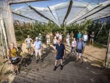Klussenclub uit Oldenzaal plukt kersen nu rommelmarkt niet doorgaat: 'De band wordt versterkt'