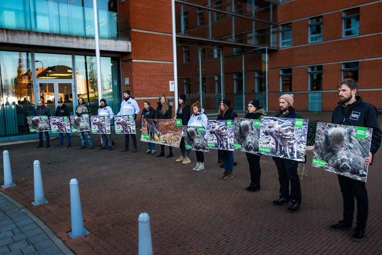 De dierenrechtenactivisten voeren stil protest met afbeeldingen van everzwijnen in de hand.