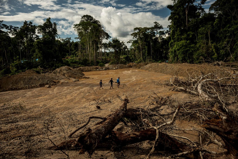 Illegale goudmijnen zorgen voor grote schade in het Amazonegebied, rampzalig voor het Munduruku-volk dat daar woont.