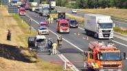 Izegemnaar ziet tien jaar oude wagen  uitbranden langs de snelweg