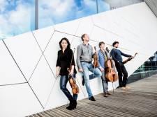 Cellist Jeroen den Herder is toe aan een leven na het Ruysdael Kwartet
