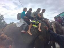 Op olifant gevluchte Romy (19) helpt nu in ziekenhuis Nepal