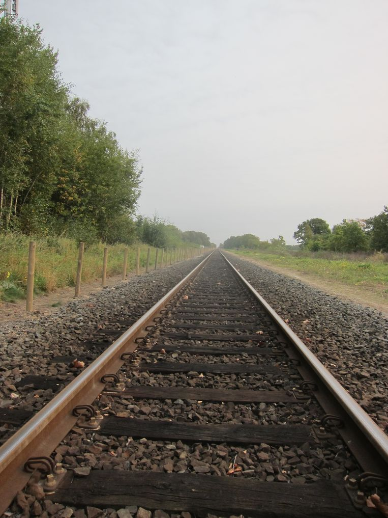 Kan Maria de spoorlijn vlot trekken? Beeld RV