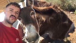 Ezel 'huilt van geluk' mee met baasje bij emotioneel weerzien na lockdown