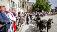IN BEELD. Priester zegent paarden en koetsen op de Markt van Eernegem