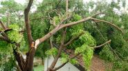 Bescherm je huis tegen stormschade met deze tips