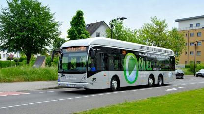 """Busbouwer Van Hool krijgt """"grootste Europese order ooit voor waterstofbussen"""""""