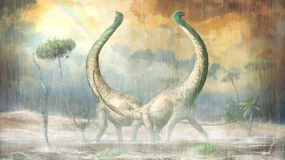 Nieuwe dinosoort ontdekt en die kan inzicht geven in waarom sommige zo gigantisch werden