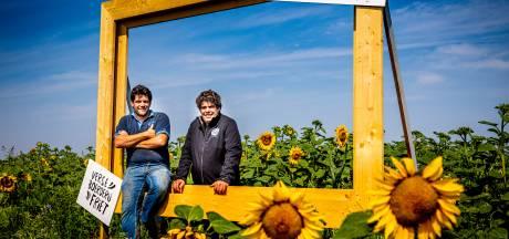 Op de foto met zonnebloemen in Goudswaard: 'Met dit idee willen we een vakantiegevoel creëren'