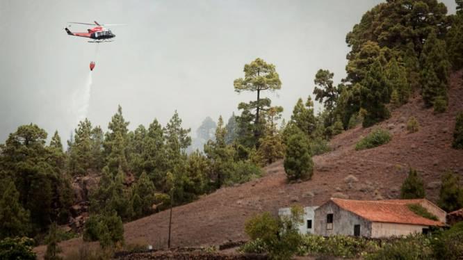 Belg kort geëvacueerd bij bosbrand in Tenerife