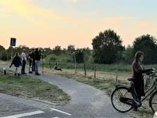 Wolfspotten op de dijk in Vlijmen, 'Spannend en mooi'
