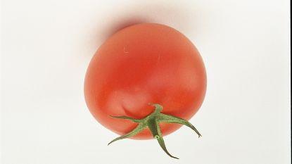 Tomaat blijft populairste groente, appel leidt de dans in de fruitschaal