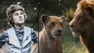 Gezicht van onze SOS HLN-acties is nu stem van Simba in 'The Lion King'