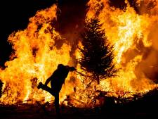 Otterlo gaat gebruikte kerstbomen herplanten