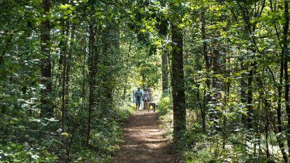 Nieuwe wandellus in de maak tussen Poelberg en Meikensbossen