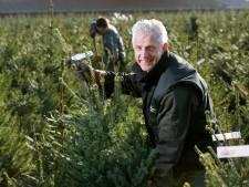 Kerstbomenkoning uit Boekel in de wolken: '2,5 miljoen kerstbomen aan man gebracht, super'