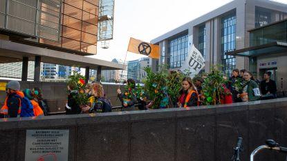 Klimaatactivisten delen planten uit aan toekomstige Eurocommissarissen