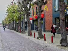 Vervolg centrumplan Made uitgesteld door bomenproblematiek