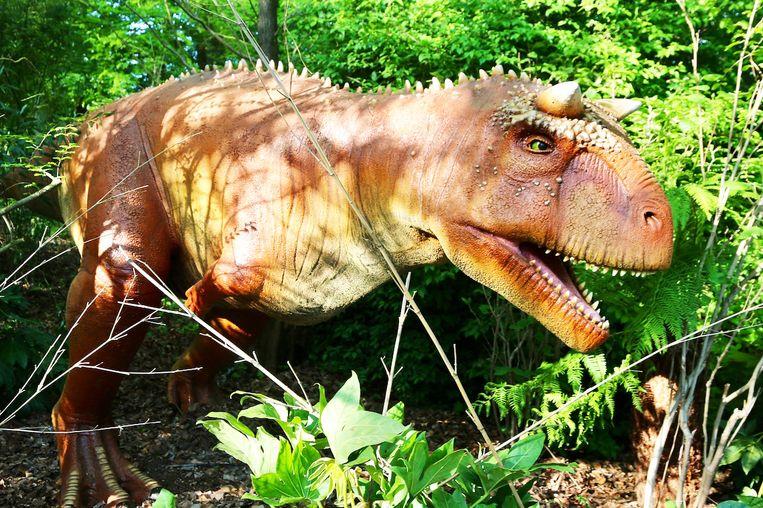 De Carnotaurus.