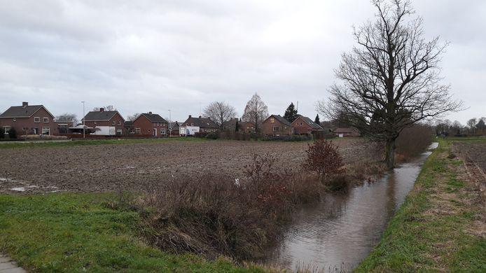 De zogeheten maisplak tussen de Kerkvonder en de Kleefseweg in Ven-Zelderheide. Straks staat hier geen mais meer maar ligt er mogelijk een dorpspark.