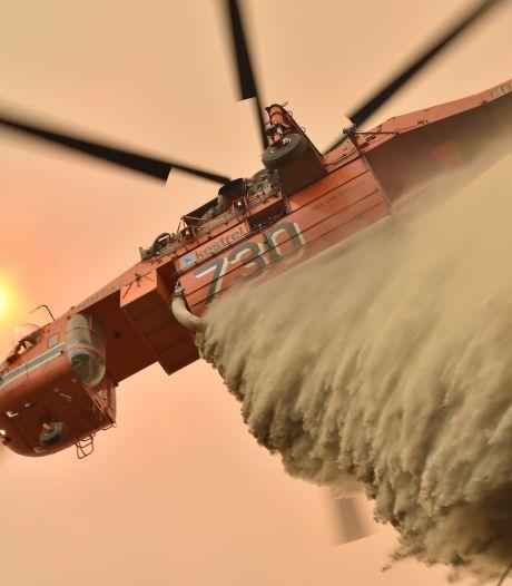 Des milliers d'hectares de sites protégés partis en fumée en 2019