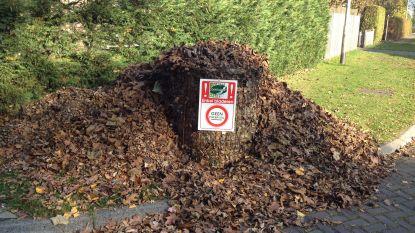 Geen groenafval in bladkorven