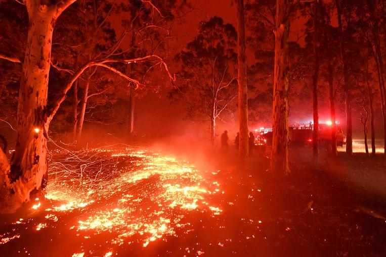 Bosbranden in de stad Nowra in New South Wales.  Beeld AFP