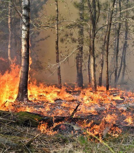 Fase 2 van kracht: hoogste risico op natuurbranden