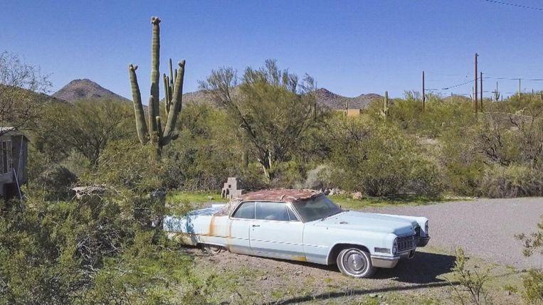 Deze blauwe Cadillac Deville werd pas een maand na de moord op Sally Van Hecke naar Antwerpen verscheept.