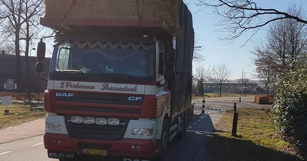 Soerendonk mist fietspad in plan Damenweg | Cranendonck, Heeze-Leende - Eindhovens Dagblad